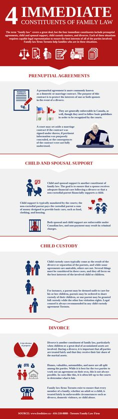 4 Immediate Constituents of Family Law - Infographic