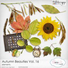 CU Autumn Beauties Vol. 16
