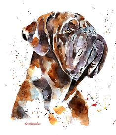 Dogue De Bordeaux at its finest Print Watercolour Watercolor Animals, Watercolour, Unique Jewelry, Handmade Gifts, Artwork, Bullmastiff, Etsy, Vintage, A3