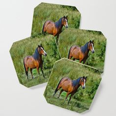 Beautiful Bay Horse In A Grassy Field Coaster Horse Gifts, Gifts For Horse Lovers, Bay Horse, Drink Coasters, Tech Accessories, Horses, Dance, Art Prints, Tabletop