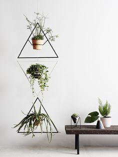 Capra Designs Trilogy plant hangers Mimi-Myrtle +Co. Shop