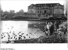 Dresden, Großer Garten, Gartenpalais, 1973
