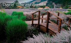 I can smell the lavender now!  Matanzas Creek Winery lavender festival has set the date...
