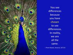 Differences.8jpg.jpg