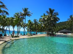 The kid-friendly Bougainvillea Pool, in front of the Reef View Hotel, feels like a secluded lagoon, and is right on the edge of stunning Catseye Beach. Last Holiday, Hamilton Island, Luxury Accommodation, Bougainvillea, Things To Do, Beach, Outdoor Decor, Feels, Travel