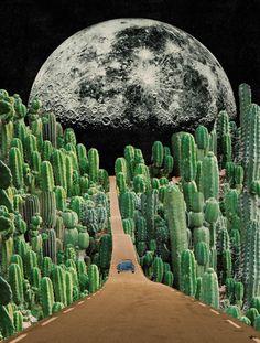Collagem, collage, lua, surrealismo, cactus, estrada, moon