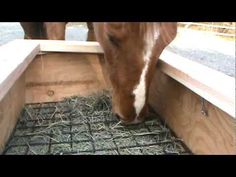 Perfect slow grazer to reduce hay waste. DIY kit available but I think a cattle panel cut to size would be perfect. Horse Shelter, Horse Rescue, Horse Hay, Horse Love, Pet Donkey, Hay Feeder For Horses, Cattle Panels, Horse Arena, Slow Feeder