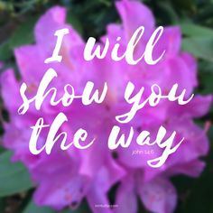 God will show you the way | God is always in our presence to show us the way | kimtuttle.com | inspirations and encouragement for a God-centered home | DESIGN.ORGANIZE.SIMPLIFE