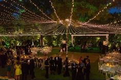 """A creative lighting plan will really elevate a design scheme. """"We used strands of twinkle lights to create a glowing canopy over an outdoor reception, which brought it to a whole other level,"""" says Becky Navarro of Pearl Events Austin."""