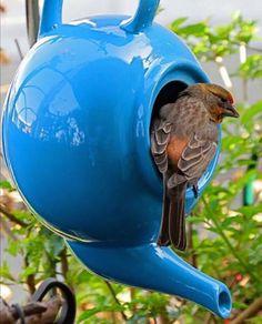 Hang a teapot and turn it into a bird feeder. Adorable idea!