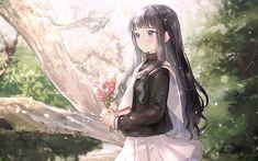 Descargar fondos de pantalla Cardcaptor Sakura, Tomoyo Daidouji, Japonesa, anime, manga, series de televisión