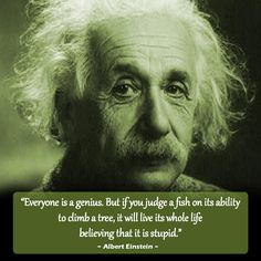 1000 images about quotes on pinterest einstein dr for Dr albert fish
