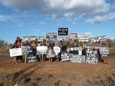 Hawaiians Win Community GMO Victory Over Monsanto  HawaiiWinsGMOVictory.jpg