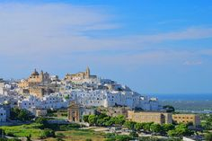 Day 2 Magnificent Sassi & Trulli Escorted Tour #ostuni #traveltoitaly