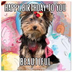 Happy Birthday to you beautiful #FunnyBirthdayWishes