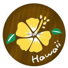 Hawaiiのハイビスカス(黄色)