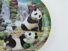 Panda Porcelain Collector Plate Gentle Giants of by JemmaJamma