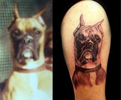 black and grey realistic boxer portrait tattoo by Angela Leaf Boxer Tattoo, I Tattoo, Boy Tattoos, Animal Tattoos, Tatoos, Fall Leaves Tattoo, Realistic Rose Tattoo, Great Tattoos, Body Mods