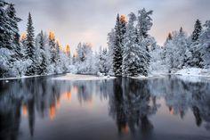 Palkitut | Vuoden Luontokuva Talviaamun heijastuksia. Petri Puurunen, Finland