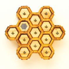 Bee Boxes / James Shott Designs