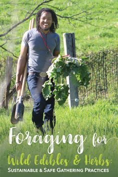 Foraging for Wild Edibles + Herbs: Sustainable + Safe Gathering Practices