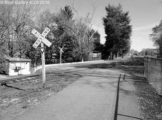 BWC  Paths n Trails