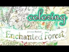 Coloring Book Journey - 002 Enchanted Forest by Johanna Basford - YouTube