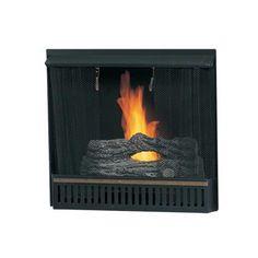 Paramount - 23 In. Gel Fireplace Insert - GF-INSERT - Home Depot Canada $150
