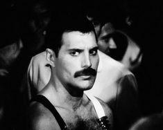 Photo of Freddie for fans of Freddie Mercury.