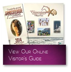 http://www.chincoteaguechamber.com  Chincoteague Visitor's Guide