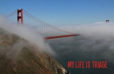 San Francisco Quote:  By Andrew Vachss