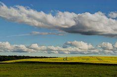 Windows-Landschaft