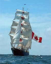 Image result for navio escola inglês