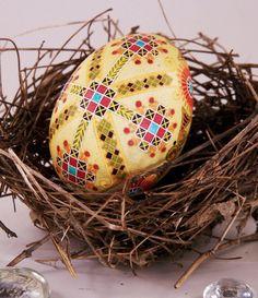Yellow Cross, Duck egg,