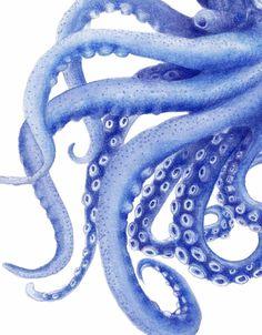 Blue Octopus Watercolor Illustration Archival Art Print 'Tentacles' Coastal Decor Artwork