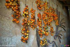 Pomodori al filo, il miglior sistema di conservazione per poter  gustare i sapori della dieta mediterranea tutto l'anno! www.tourango.it