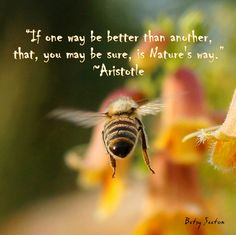 If one way be better than another, that, you may be sure, is Nature´s way. Aristoteles