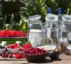 10 zasad dobrego nalewkarza - Biblioteka Nalewek House Plants, Table Decorations, Vegetables, Food, Memories, Summer, Alcohol, Memoirs, Home Plants