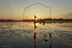 Fotografia Lake lotus de Saravut Whanset na 500px