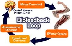 biofeedback chronic pain - Google Search
