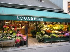 my favorite flower shop in paris.  i lived across the street from it for one blissful week.
