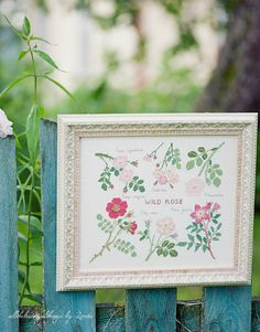 Herb Embroidery, Japanese Embroidery, Embroidery Books, Embroidery Ideas, Country Cottage Needleworks, Little House Needleworks, Cross Stitch Rose, Cross Stitch Flowers, Quilt Stitching