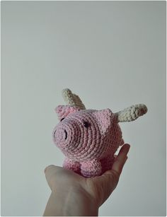 Chancho volador/Flying pig | Flickr - Photo Sharing!
