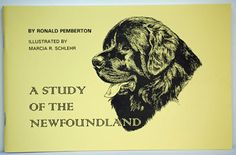 A Study of the Newfoundland