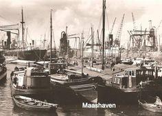 8810912-maashaven.large.jpg