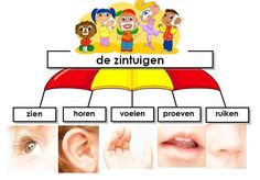 Dutch Words, Dutch Language, Spelling, Vocabulary, Homeschool, Parachutes, Science, Ads, Teaching