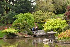Brooklyn+Botanical+Garden   brooklyn-botanical-garden.jpg