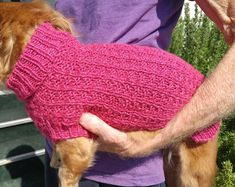 My little muse Lena told me she wanted a new sweater so I came up with Lena's Waffle Stitch Miniature Dachshund Sweater. Beginner Knitting Patterns, Jumper Knitting Pattern, Knitting For Beginners, Knit Patterns, Free Knitting, Sweater Patterns, Design Patterns, Knitting Projects, Crochet Pattern