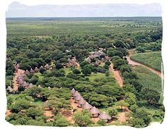 Letaba main rest camp, Kruger National Park, a lush bushveld oasis and top location for game viewing, particularly elephants. South Africa Holidays, South Africa Tours, Kruger National Park Safari, National Parks, Africa Destinations, Game Lodge, Wildlife Safari, Game Reserve, African Safari
