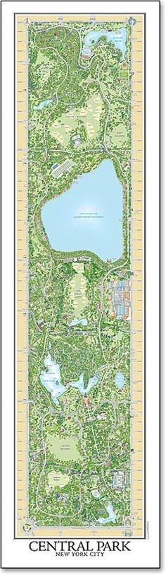 The Central Park Entire, The Definitive Illustrated Map, locates thousands of different trees, showing precisely where each one grows in the Park, with a special icon denoting its species. There are over 19,600 trees on the map! $35